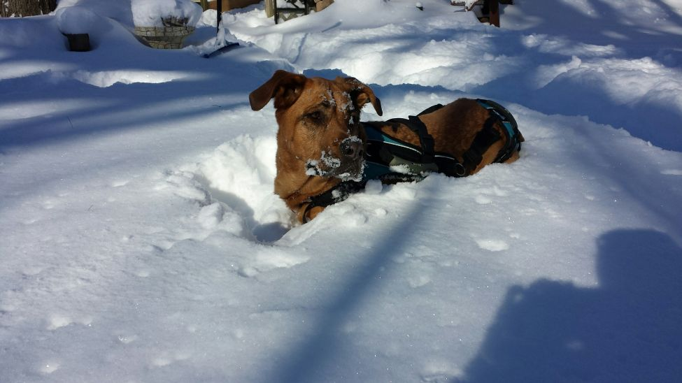 did I mention.. i love ...love ..love snow!!